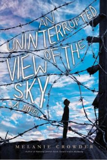 An Uninterrupted View of the Sky - Melanie Crowder<br/>