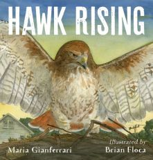 Hawk Rising - Maria Gianferrari<br/>