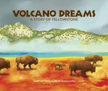 Volcano Dreams - Janet Fox<br/>